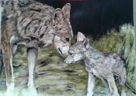 """GA Part of the Pack"" Colored Pencil on Paper 11"" x 14"" $550"